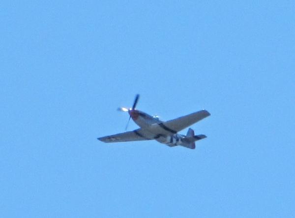 P-51 Flyover