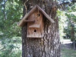 Scary Birdhouse
